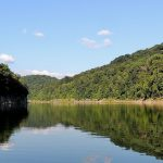 A photo of the Big South Fork River, taken from a boat.